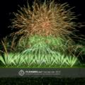 Feuerwerk-Fotokalender-2019