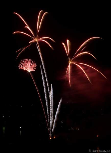 Feuerwerk bei Schlossbeleuchtung Heidelberg 2008
