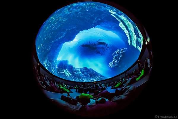 360 Grad-Kino Traumzeit-Dome im Europa-Park mit Projektionsshow Beautiful Europe