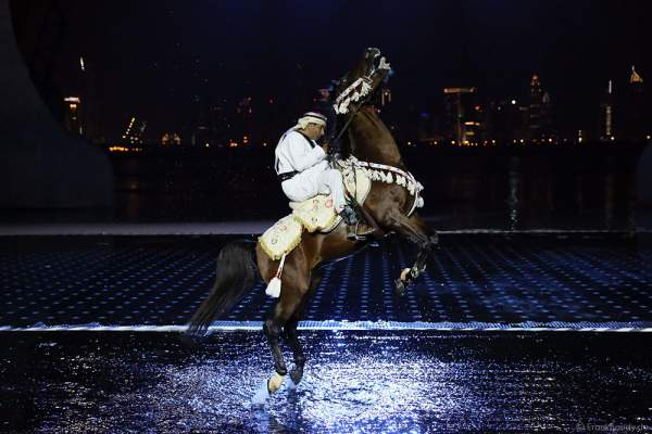 Ali Al Ameri - The Horsemaster, UAE National Day 2015, Dubai