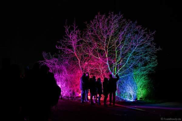 Farbenprächtige Beleuchtung bei der Weinbergnacht 2017 in Bad Dürkheim