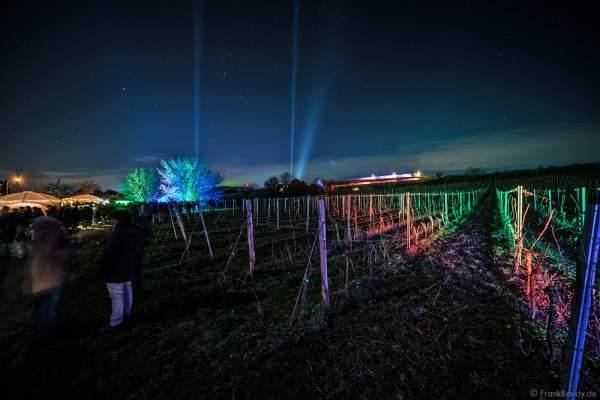 Leuchtende Weinbergnacht 2017 in Bad Dürkheim