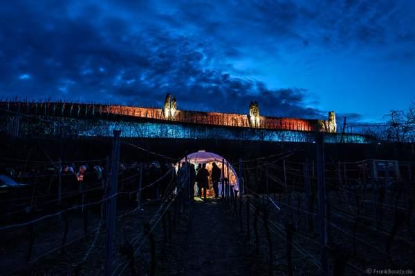 Beleuchtetes Kuppelzelt bei der Weinbergnacht 2017 in Bad Dürkheim