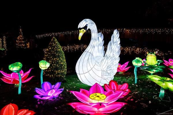 Chinesisches Lichterfest im Europa-Park zur Wintersaison 2017/2018